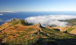 Madeira von oben / Bild: Imago