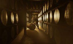 Holz. Jahrelang reift der Brand in den Fässern heran, bis er zum Whisky wird. / Bild: (c) Dewar's