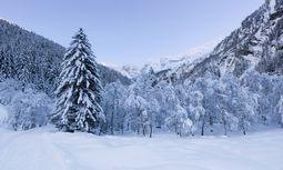 Das verschneite Valsertal / Bild: Imago