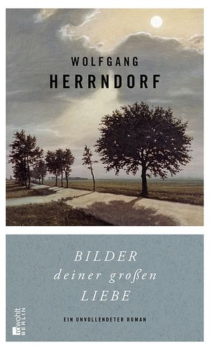 Wolfgang Herrndorf: ''Bilder deiner großen Liebe''