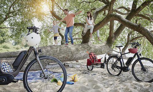 18-mal mehr E-Bikes als Elektroautos in Österreich