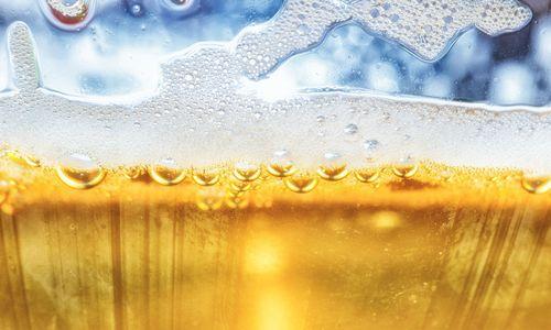 Bier braucht Gesellschaft [premium]