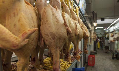 Ukrainischer Agrarkonzern trickst bei Hühnerfleisch-Import in EU