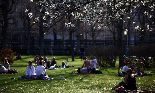 Treffen in Parks doch weiter möglich [premium]
