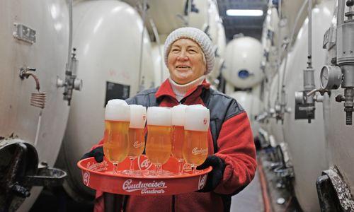 Urig. Nur in der Brauerei gibt es die rohe Version des Budweisers.