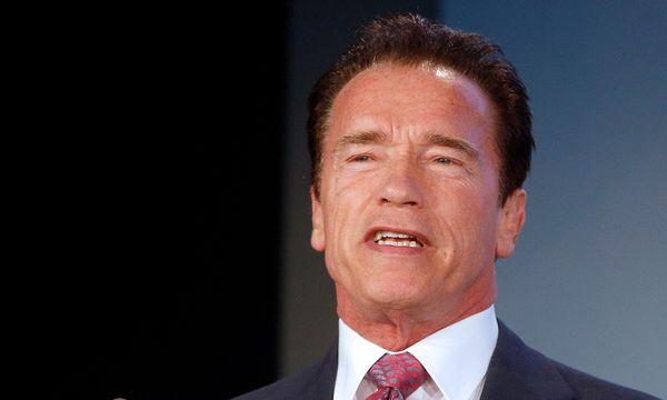 Schwarzenegger  / Bild: APA