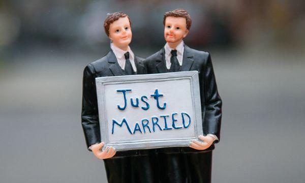 Symbolbild: Ehe für alle / Bild: APA/dpa/Gregor Fischer