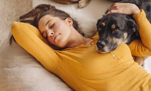 Schlafende Frau mit Hund / Bild: (c) imago/Westend61