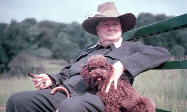 """Ein Haustier kann bei öffentlichkeitswirksamer Selbstdarstellung nicht schaden. Politiker herzen und kraulen daher gern ihre Vierbeiner vor der Kamera. Auch das politische Naturtalent Winston Churchill. / Bild: (c) Mark Kauffman/""""Life"""""""