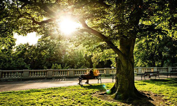 (c) Prague City Tourism_www.prague.eu Ruheraum. Prag ist eine durchaus grüne Stadt: Hier der Grébovka-Park in Vinohrady.