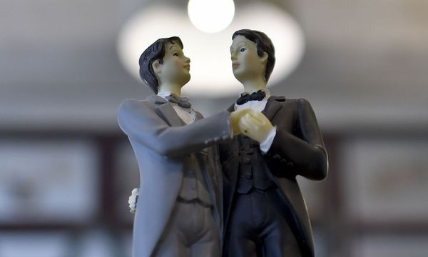 Symbolbild: Die Ehe wird für homosexuelle Paare geöffnet  / Bild: APA/HERBERT NEUBAUER