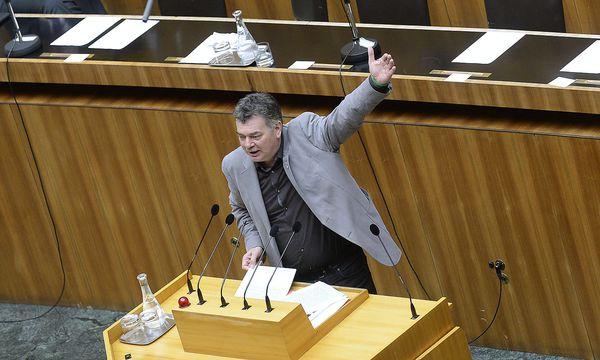 Werner Kogler fordert ein baldiges Rahmenprogramm für den EU-Vorsitz. / Bild: APA/ROBERT JAEGER