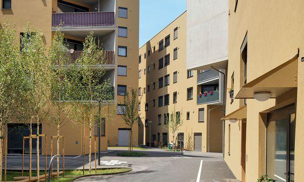 (c) Wolfgang Thaler Bruch mit Konventionen. In der Seestadt Aspern realisierten PPAG Architects das Projekt Slim City.