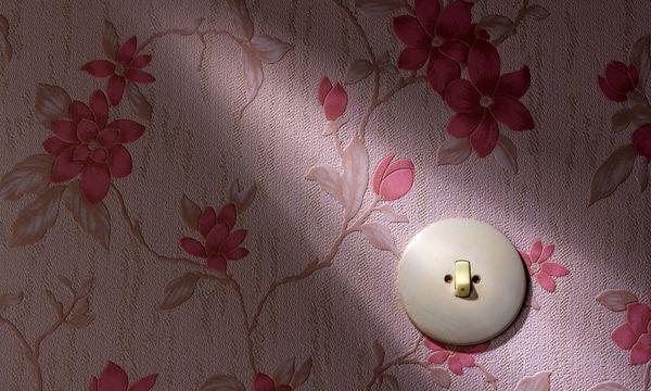 Themenbild: Strompreis  / Bild: Bidlerbox