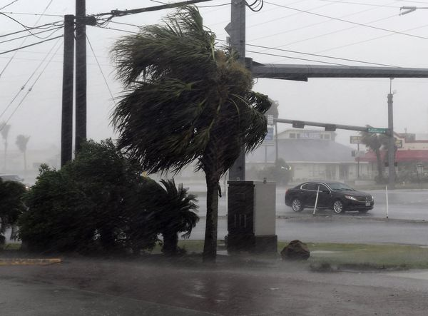 So wütete der Hurrikan Harvey in Corpus Christi / Bild:  AFP (MARK RALSTON)
