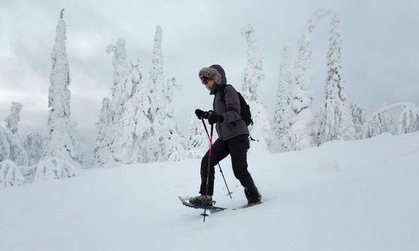 Schneeschuhwandern braucht kein Tempo, vielmehr ist der Weg das Ziel. / Bild: (c) imago/Dieter Mendzigall (imago stock&people)