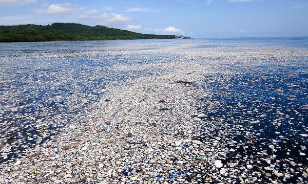 Die EU will den Plastikmüll reduzieren, streitet aber noch über die Maßnahmen. Das Bild stammt von der Küste vor Honduras. / Bild: APA/AFP/CAROLINE POWER PHOTOGRAP