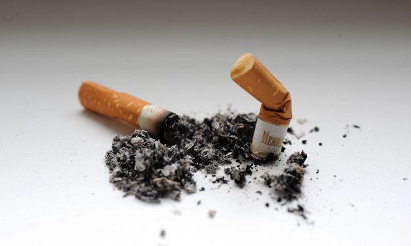 Die FPÖ und der Kampf ums Rauchen. / Bild: (c) Die Presse (Michaela Bruckberger)