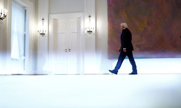 Bundespräsident Frank-Walter Steinmeier, 61, ist fest entschlossen, Neuwahlen abzuwenden. / Bild: REUTERS