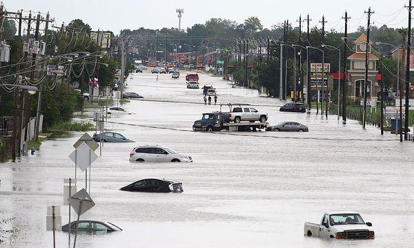 Der Schaden könnte mehr als 125 Mrd. Dollar betragen. / Bild: APA/AFP/THOMAS B. SHEA