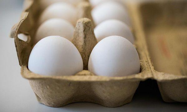 Fipronil: Bisher gehen Experten davon aus, dass rund zehn Millionen belastete Eier im Umlauf sind.  / Bild: APA/AFP/dpa/MARCEL KUSCH