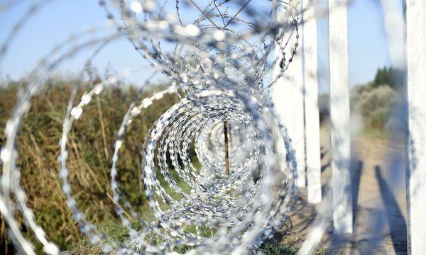 Themenbild: Stacheldraht zwischen Ungarn und Serbien. / Bild: APA (HERBERT P. OCZERET)