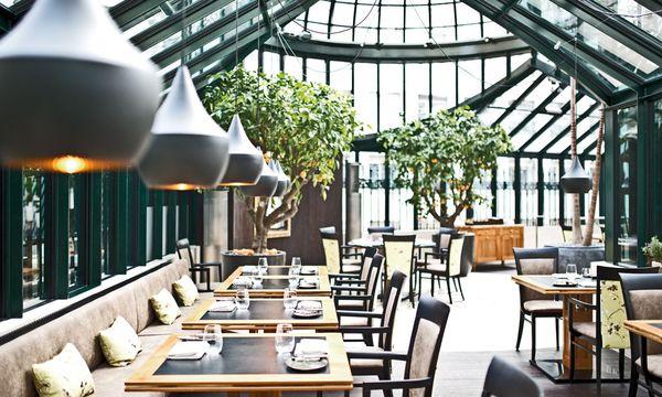 Clementine im Glashaus / Bild: Palais Coburg Hotel Residenz