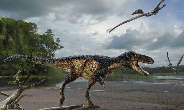 So könnte er ausgesehen haben, der Timurlengia euotica. Der T-Rex-Vorfahre war schlau, aber nicht größer als ein Pferd. / Bild: Reuters