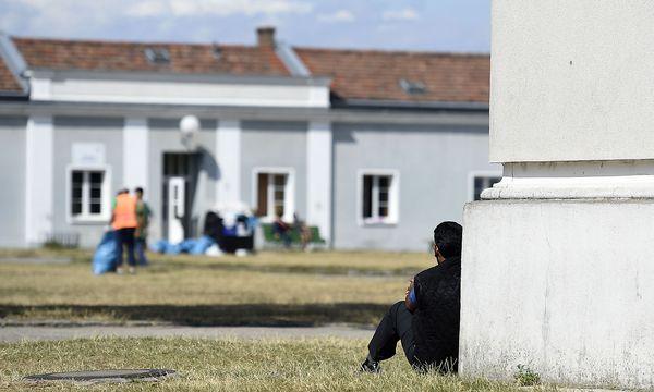 Jeder Asylwerber hat in Österreich das Recht auf Rechtsberatung und -vertretung. Der VMÖ, der dafür hautzuständig ist, steht massiv in der Kritik / Bild: APA/HELMUT FOHRINGER