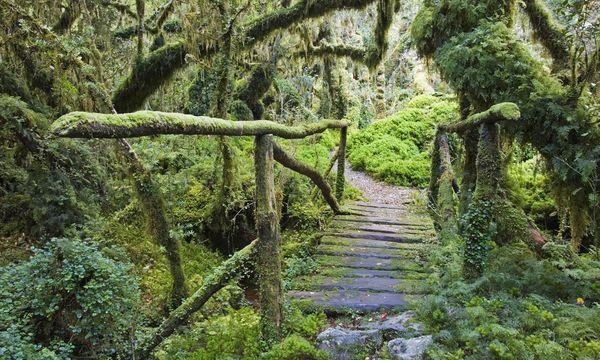 Imago stock&people Wanderungen in Patagonien sollte man nicht unterschätzen. Man ist in der Wildnis unterwegs.
