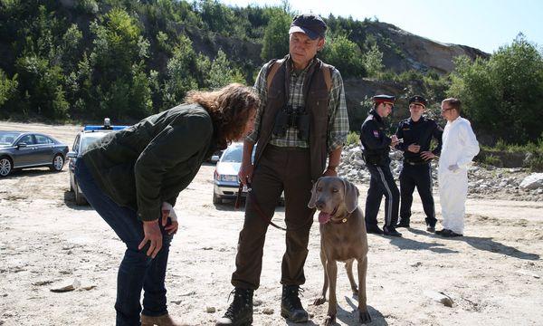 Bibi Fellner (Adele Neuhauser) versucht, einen wichtigen Zeugen zu befragen: Leider ist der Hund, der das Mordopfer gefunden hat, wenig gesprächsbereit. / Bild: (c) ORF (Hubert Mican)