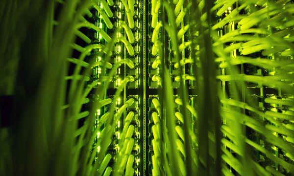 Industrie drängt sich um Fördermillionen / Bild: APA/dpa