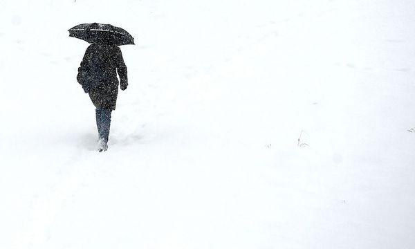 Auch kommende Woche ist mit Schneefall zu rechnen.  / Bild: APA/HELMUT FOHRINGER