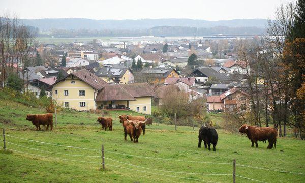 Im Vordergrund der alte Dorfkern, im Hintergrund das neue Werk. So sieht es in Munderfing aus. / Bild: (c) Die Presse (Clemens Fabry)