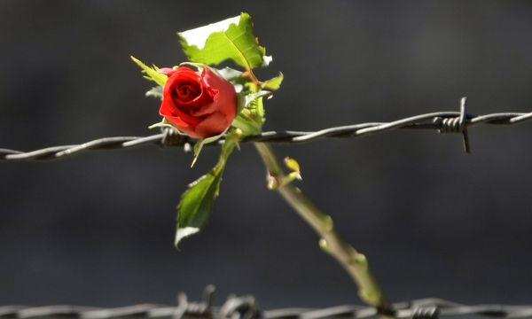Gedenken an die Opfer des Holocaust / Bild: REUTERS