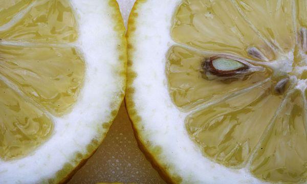 Zitronen / Bild: Teresa Zötl