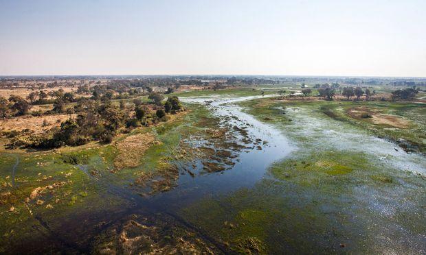 Anders als die meisten Flüsse mündet der Okavango nach 1700 Kilometern nicht ins Meer oder einen See, sondern zerfasert sich in einem Binnendelta.