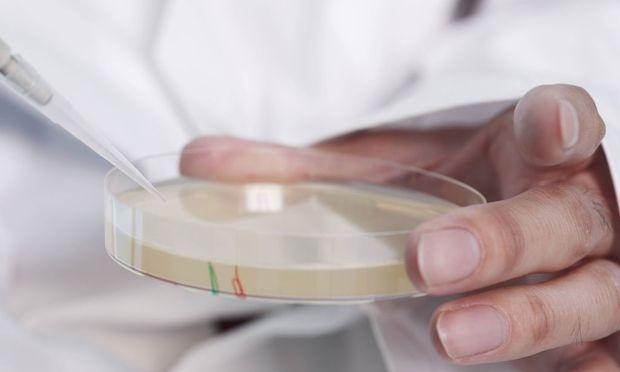 Alte Antibiotika gegen resistente Keime bieten