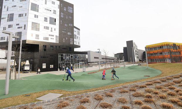 """Die """"grünen Hügel"""" im WU-Campus: Gregor, Gian und Sarah stört das triste Vorfrühlingswetter nicht beim Rollerflitzen."""