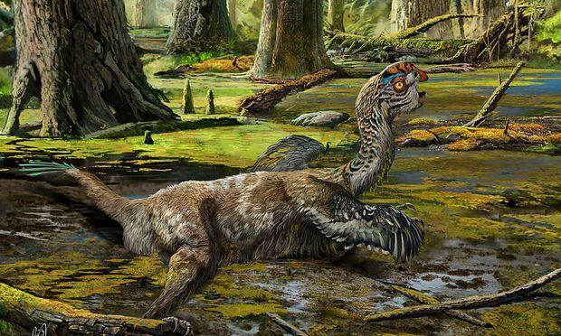 Der Tongtianlong gehörte zur Familie der Oviraptorosauria.