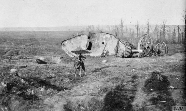 Schlacht von Flers-Courcelette, abgeschossener Mark I nahe dem Bouleaux-Wald, 15. September 1916, man sieht ein Einschussloch hinten