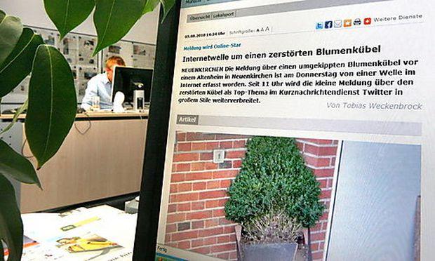 GERMANY MEDIA BROKEN FLOWER BUCKET