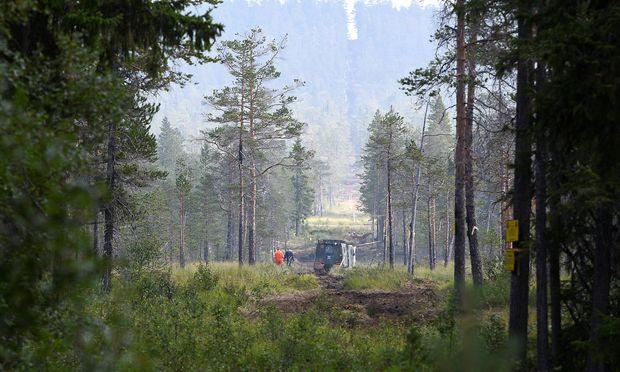 Wehrleute aus Niedersachsen löschen in Schwedens Wäldern