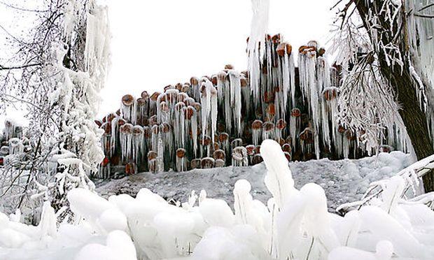 Ein mit Eis überzogener Holzplatz in Waldzell in Oberösterreich.