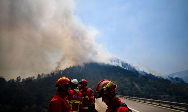 Bild: (c) APA/AFP/PATRICIA DE MELO MOREIRA
