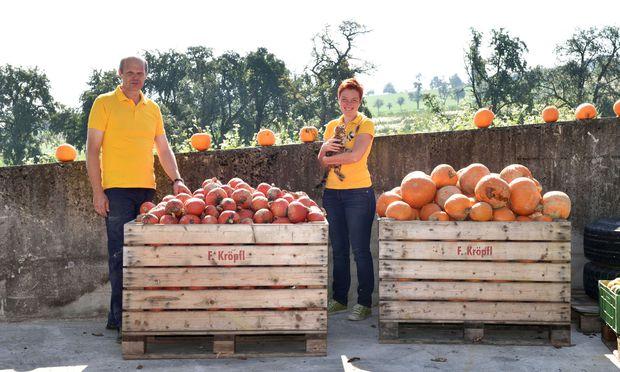 Raimund und Karin Metz sind dieser Tage mit der Kürbisernte beschäftigt, die bis zu sechs Wochen dauern kann.