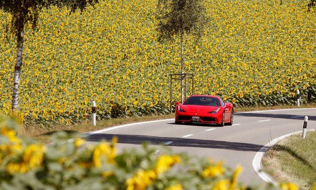 Ferrari sports car drives past a field of sunflowers near Siglisdorf