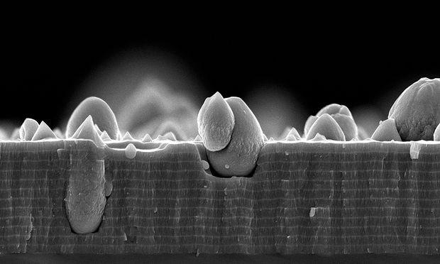 Eine wenige Mikrometer starke Dünnschicht unter dem Rasterelektronenmikroskop: Die dickeren Lagen bestehen aus Titanaluminiumnitrid, die dünneren aus Molybdän-Silizium-Bor. Die tropfenförmigen Teile sind ungewollt entstandene Defekte.