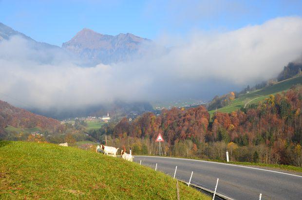 Blick auf die Gemeinde Au/Bregenzerwald, gen Osten