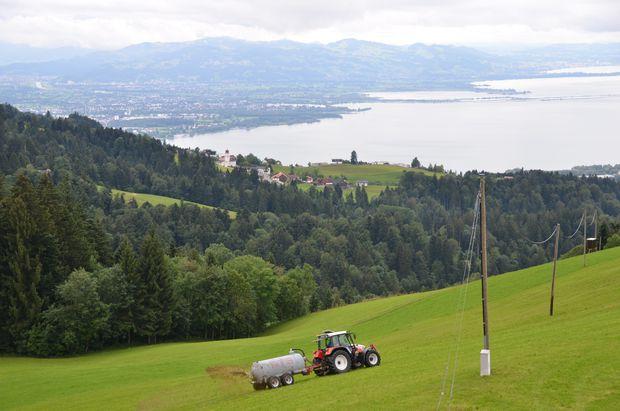 Es gibt immer was zum Schaffa! Blick über Eichenberg am Pfänder auf Bregenz, Hard, die Rheinmündung und die Schweiz